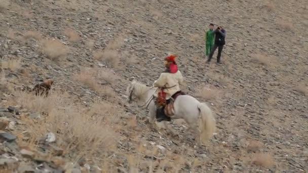 Hunter-a ló a dombra, hogy a sas
