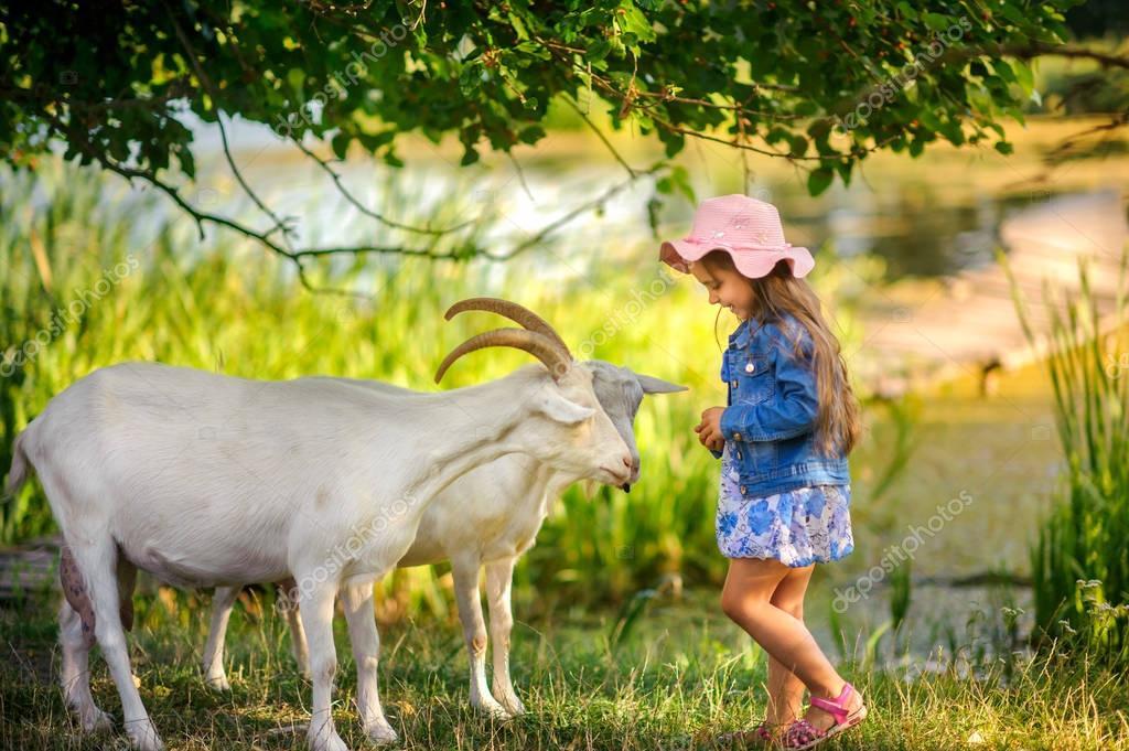 Девочка кормит козу картинка