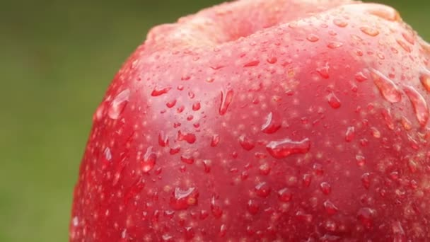 Red ripe apple covered with droplets of water rotates on a green background. Delicious healthy fruits. Food concept.