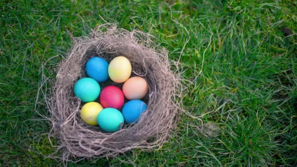 Colorful easter egg in a nest on the lawn. Easter Egg Hunt In Garden Easter concept background.