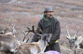 muž v tradiční deel cestování s sobů