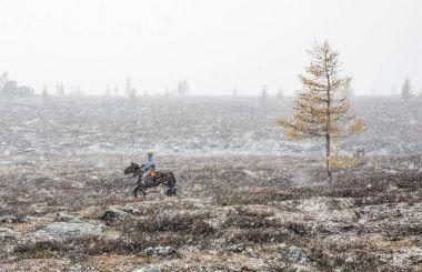 mongolian horsemen with horse in snowstorm