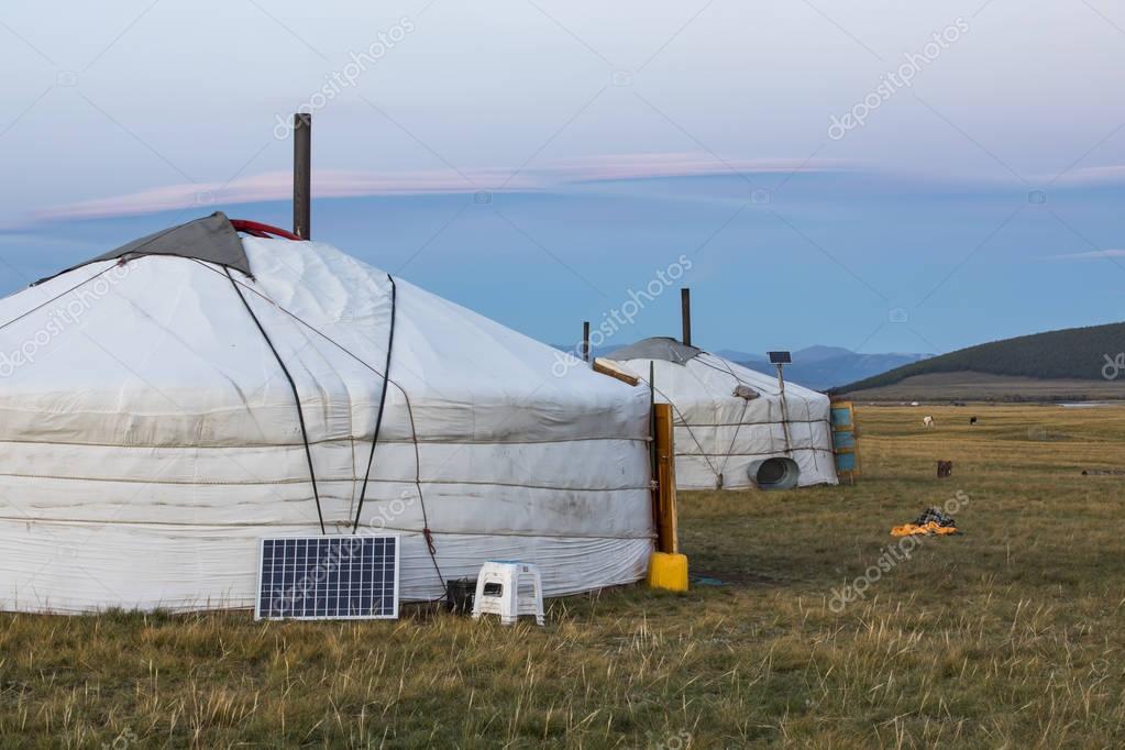 mongolian gers in landscape of Mongolia