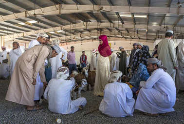 people buying and selling goats at a market