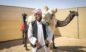 Madinat Zayed, United Arab Emirates, December 15th, 2017: arab man with camels in a desert