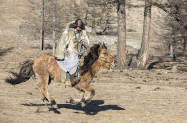 Mongolian man dressed in wolf skin jacket on his horse in a steppe of northern Mongolia