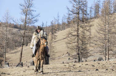 mongolian man wearing a wolf skin jacket, riding his horse in a steppe of northern Mongolia