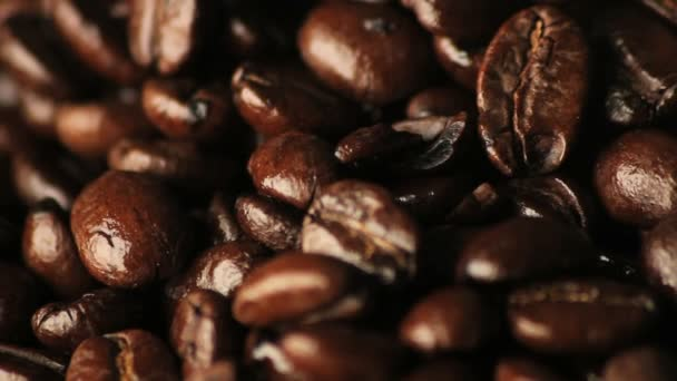 spinning coffee beans close-up