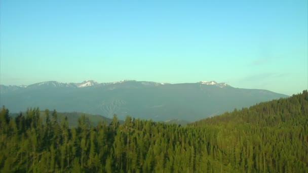 letecký snímek lesa a zasněžené hory