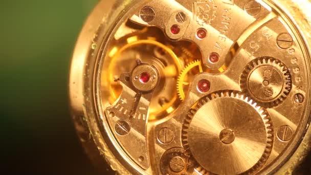 Mechanismus makro s zlaté ozubená Hd hodinky