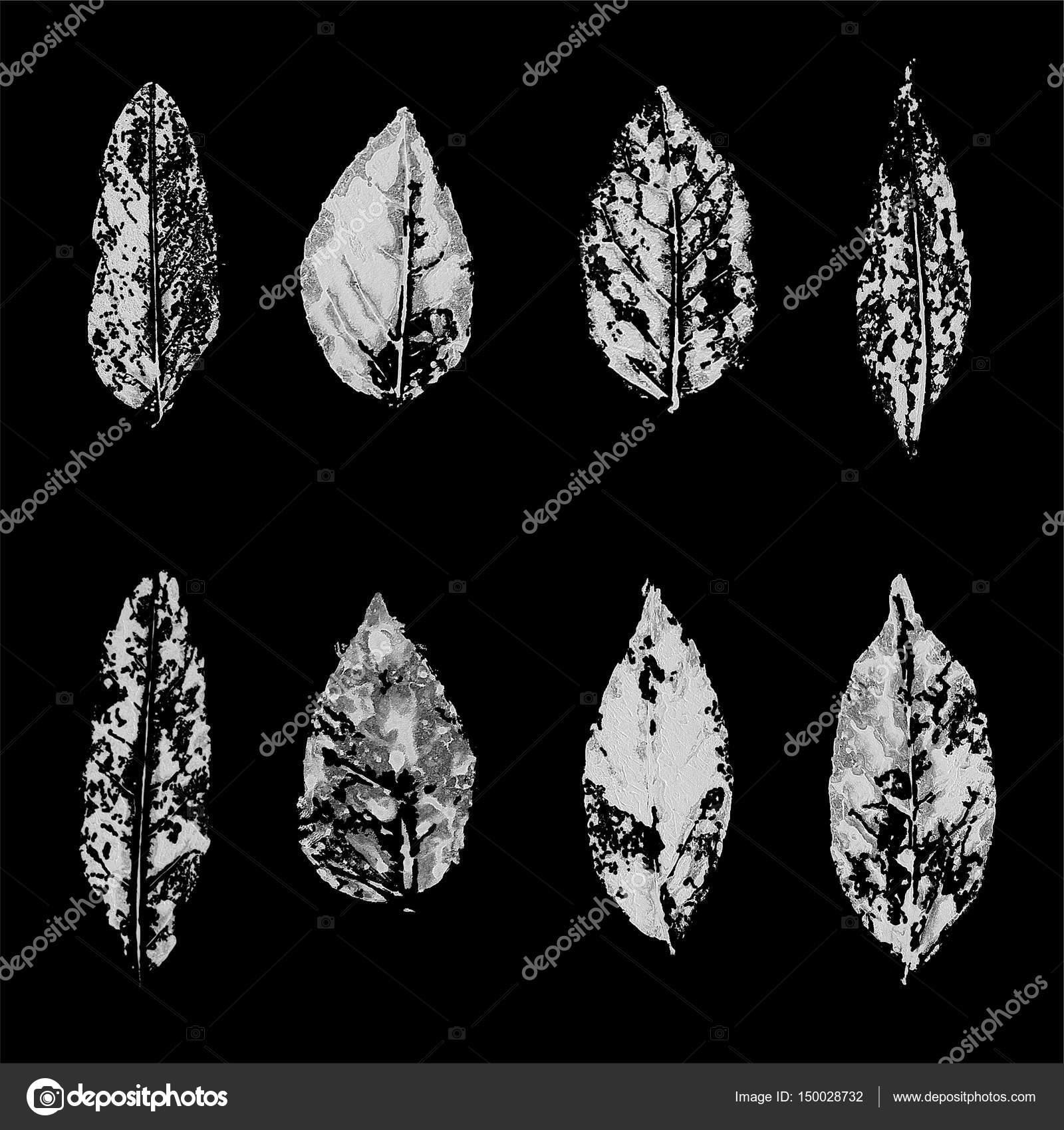 Ursprüngliche Natur print — Stockfoto © midonova.tamara #150028732