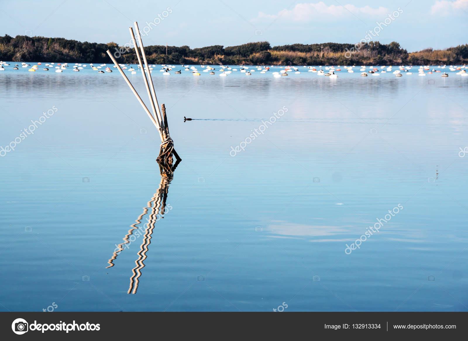湖バーコリ、フサロ — ストック...