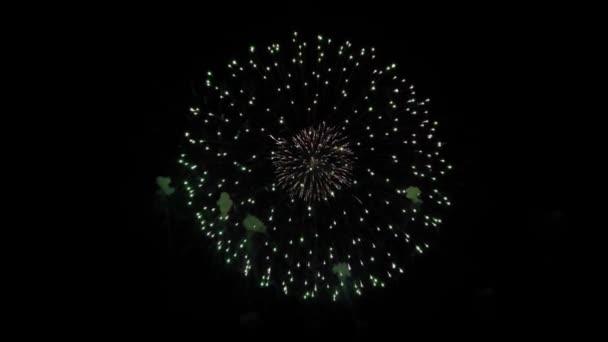Krásné vícebarevné ohňostroje ve smyčce noční oblohy Animace