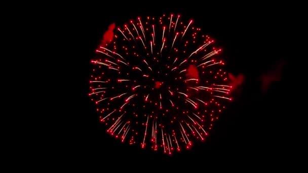 Krásný ohňostroj Explosion show na noční obloze Animace se zelenou obrazovkou.