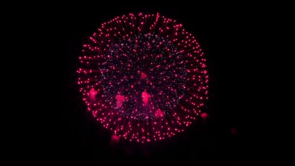 Multi color Fireworks Explosion display sky night Animace Alpha Green Screen.