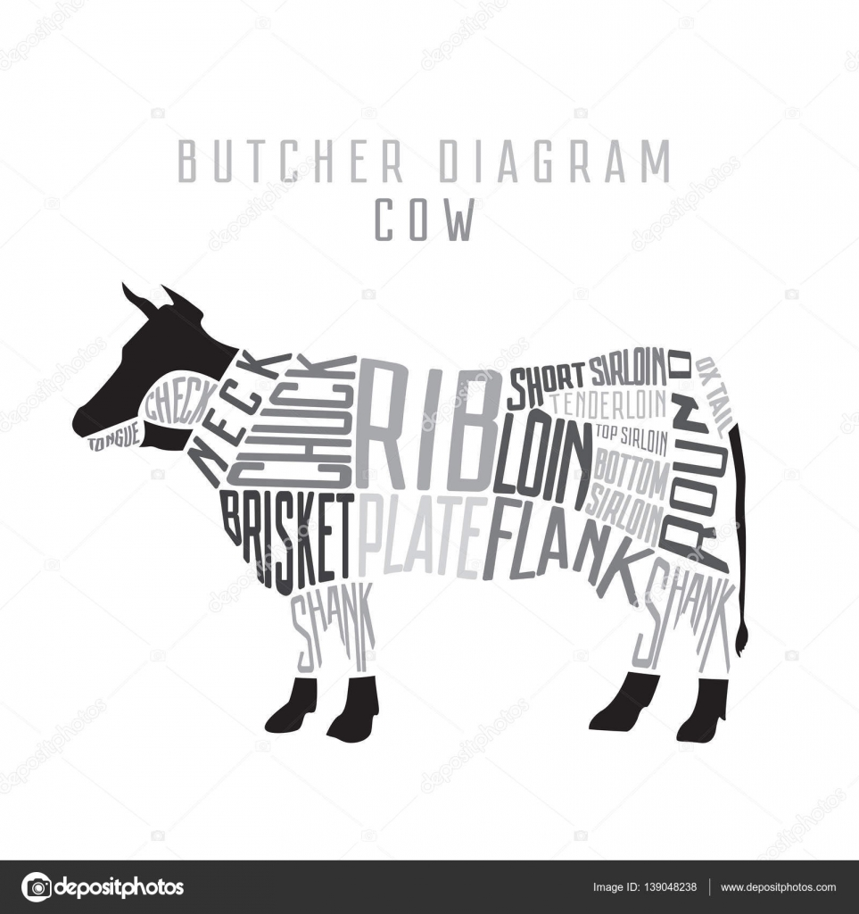 Cow butcher diagram cut of beef set typographic vintage stock cow butcher diagram cut of beef set typographic vintage vector illustration vector by bananulya ccuart Gallery