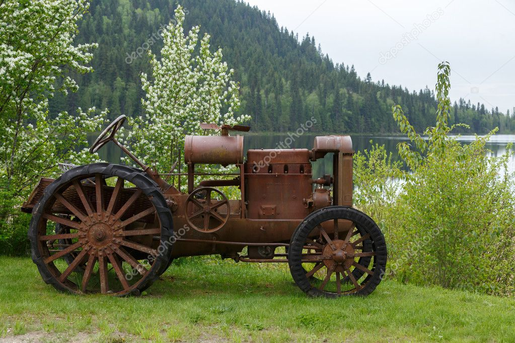 old car in green forest