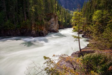 River in Wells gray provincial park