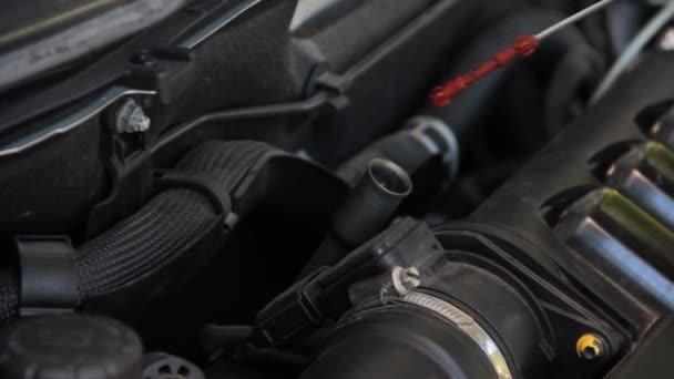 auto engine oil check