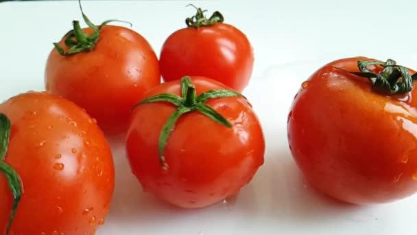čerstvých rajčat se točí
