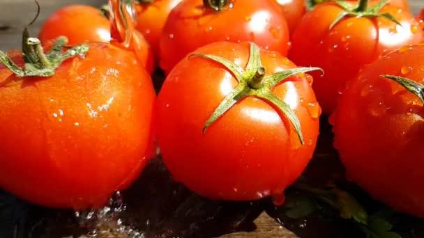 chutná červená rajčata a čerstvé bylinky nalila čerstvou studenou vodou