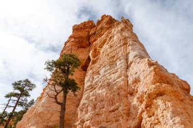 Bryce Canyon Hoodoo Formation view from Valley Floor