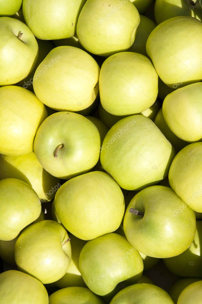 Crate of green apples