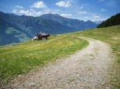 taser alm in Südtirol