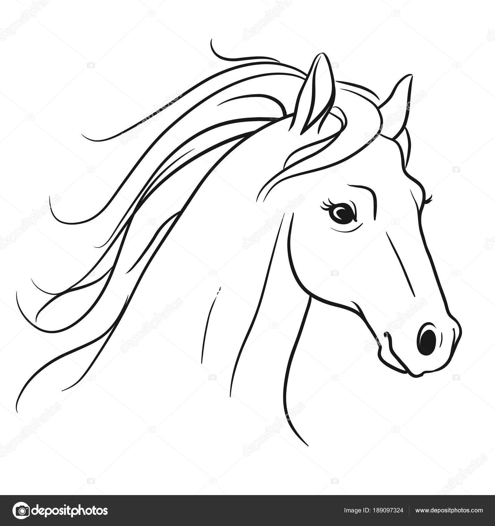 Horse Head Side View Drawing Horse Head With Flowing Mane Portrait Side View Pen And Ink Sty Stock Vector C Treemouse 189097324