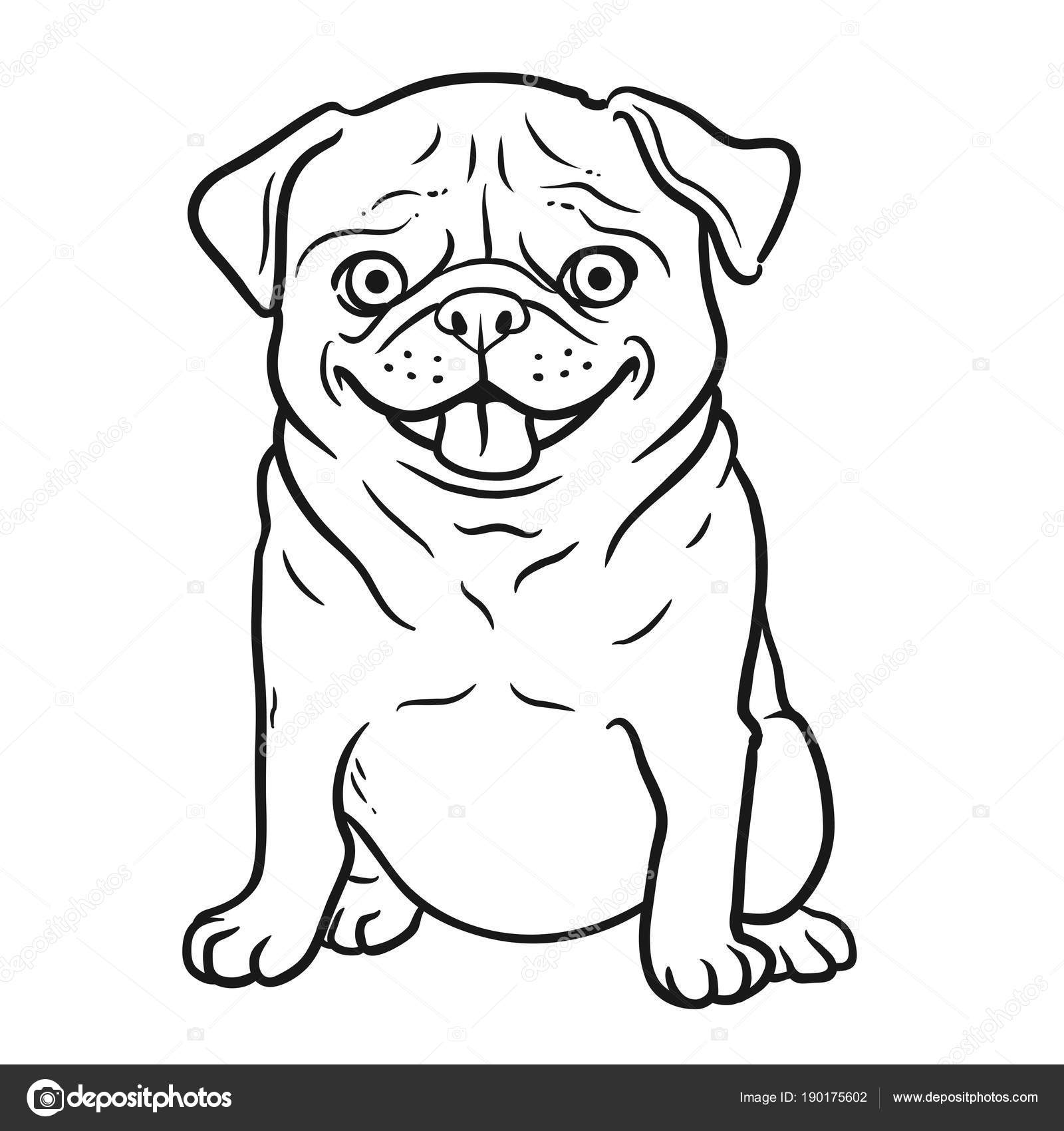 Retrato de Pug perro blanco y negro dibujado a mano dibujos animados ...