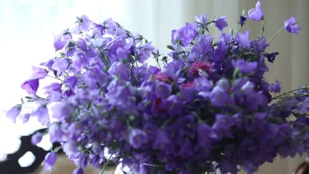 Krásné fialové květy zvony