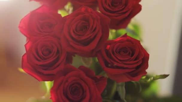 Egy csokor vörös rózsa. Közelről. Lövés a Red Epic