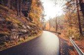 Straße durch herbstlichen Wald