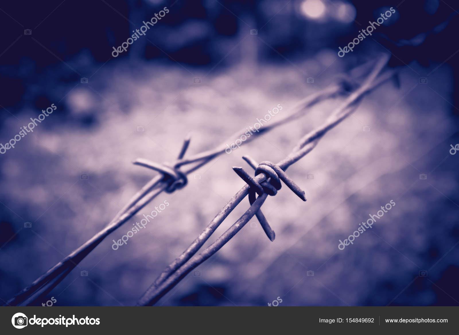 Alten elektrischen Zaun mit Stacheldraht. Terror-Gefängnis-Konzept ...