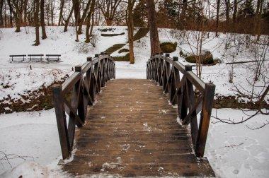 Bridge across frozen river in park