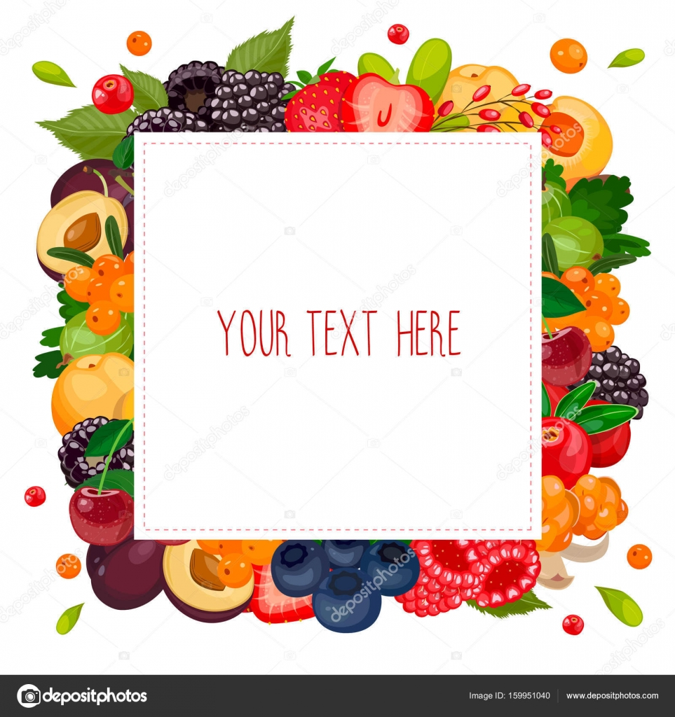 square label with berries design template frame banner vector