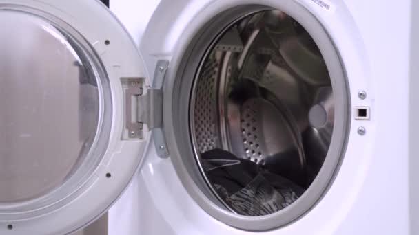 Der kleine schwarzbraune Dackel kommt und lädt in die geöffnete Waschmaschinentrommel zum Waschen. Humorkonzept der Haustierhaltung und großer Haushaltstag
