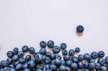 Blueberries isolated on white background. Blueberry border desig