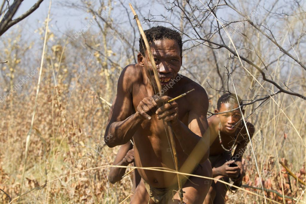 Bushmen hunting with bow