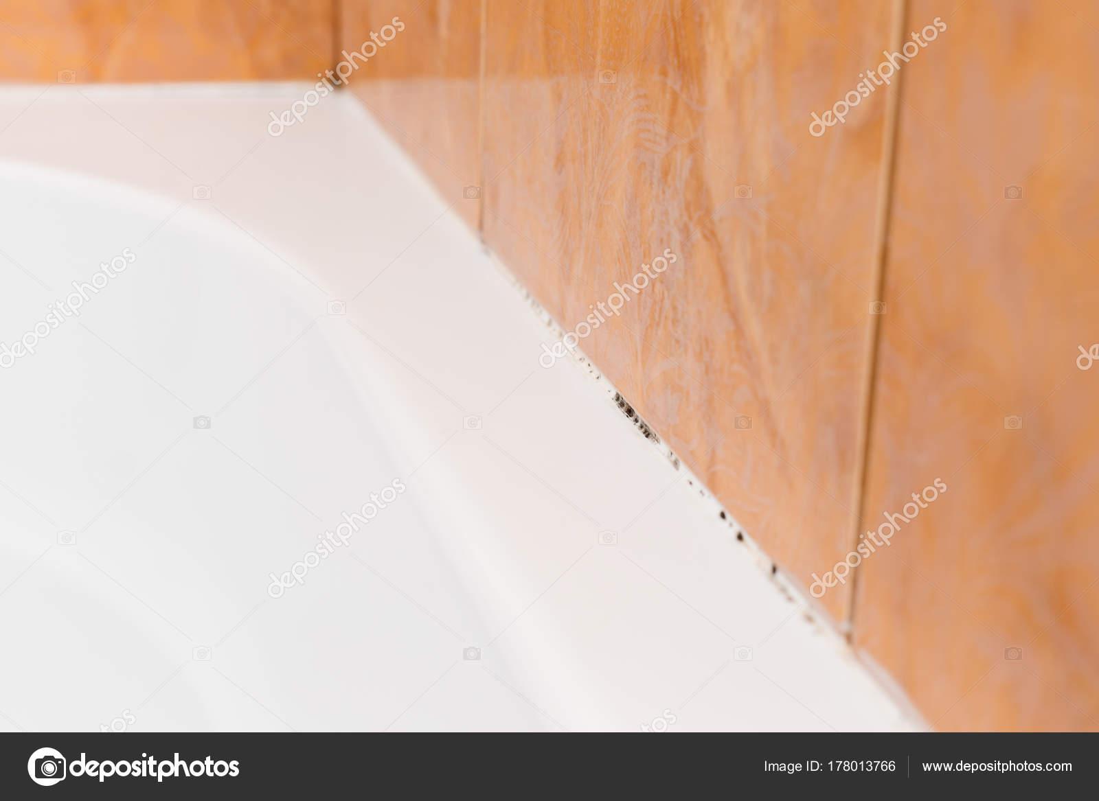 Muffa sotto il sigillante in bagno — Foto Stock © Nastenka_Peka ...