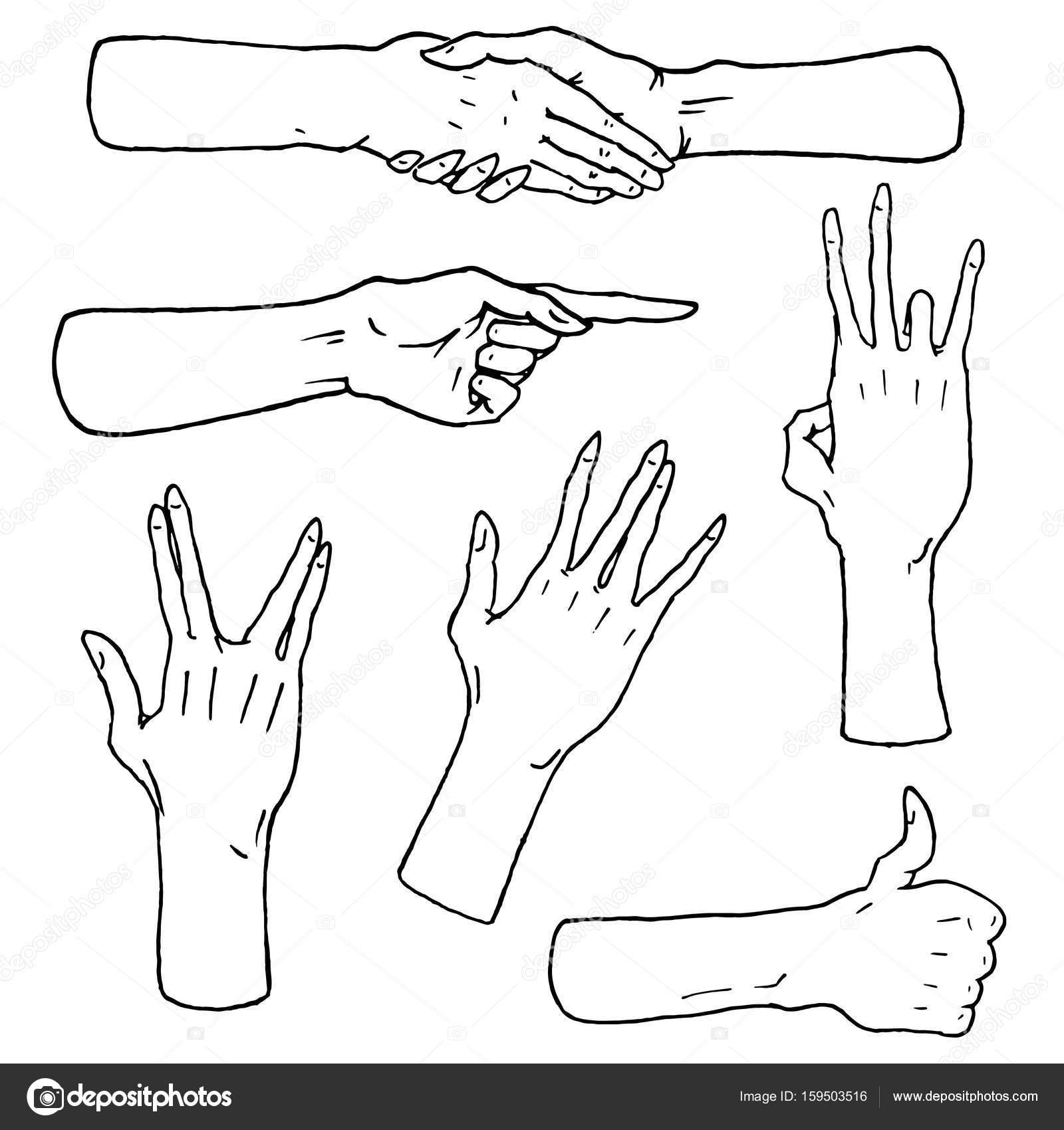 Gestos parada brazos, Palma, pulgar arriba, puntero de dedo, ok ...