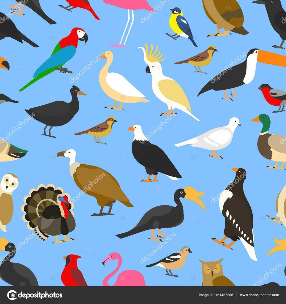 Grande insieme di tropicali uccelli domestici e altri for Piani domestici tropicali