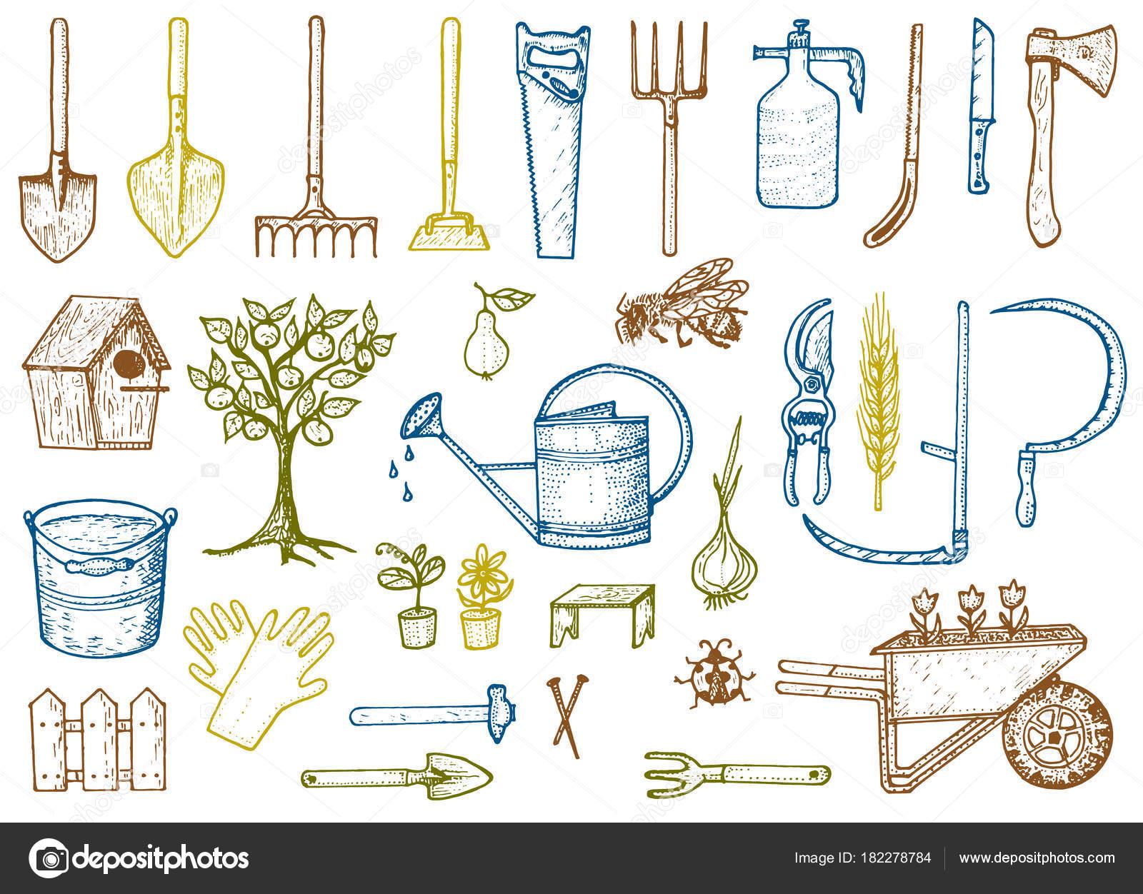 Jeu d\'outils de jardinage ou éléments. enrouleur, fourche ...