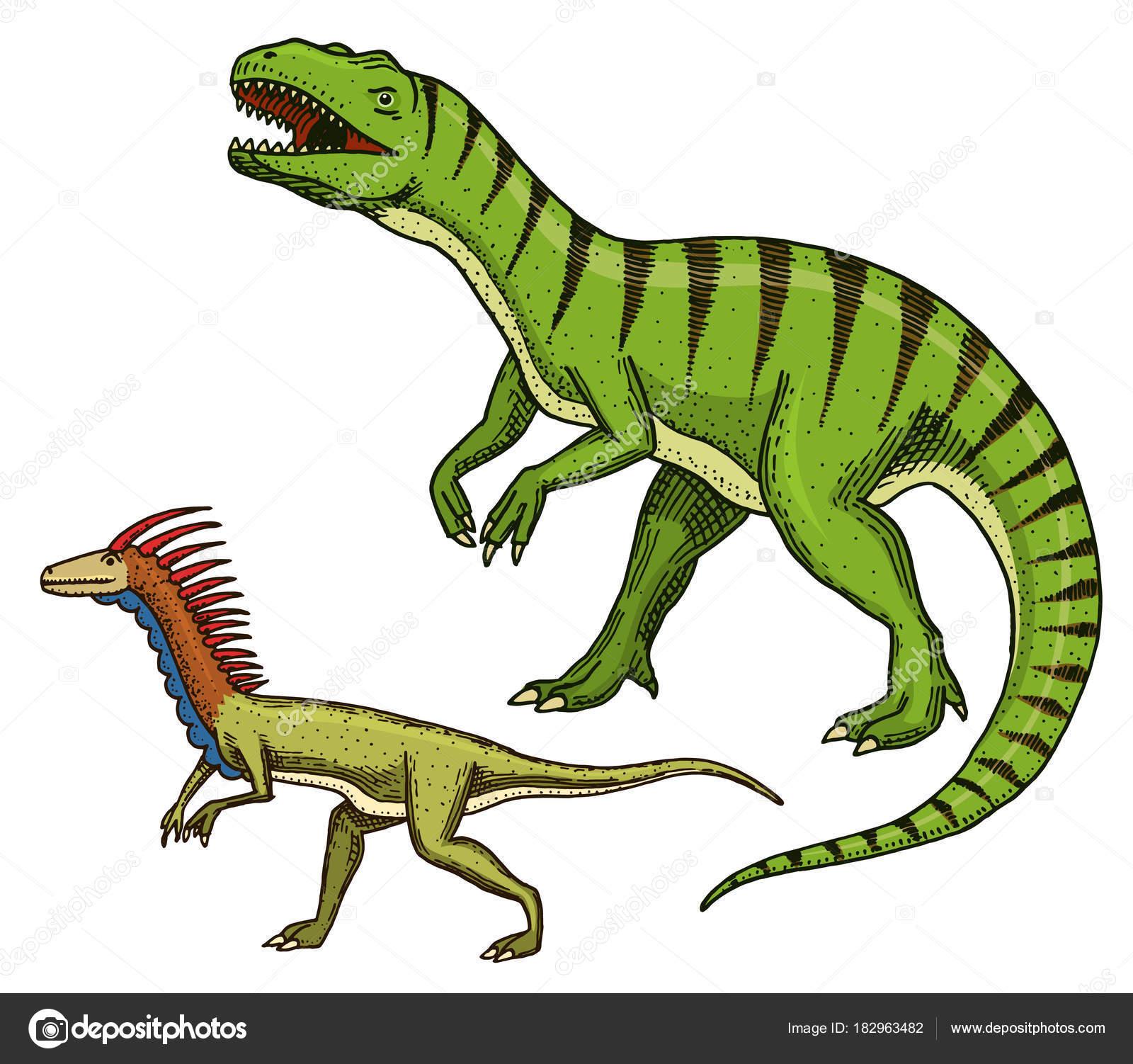 ceratosaurus dibujo dinosaurios tiranosaurio rex velociraptor