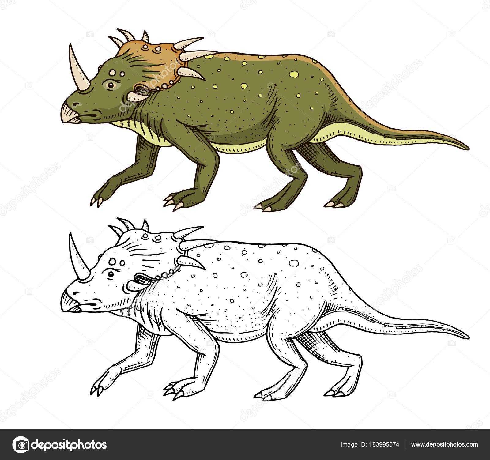 malvorlage dino skelett  x13 ein bild zeichnen