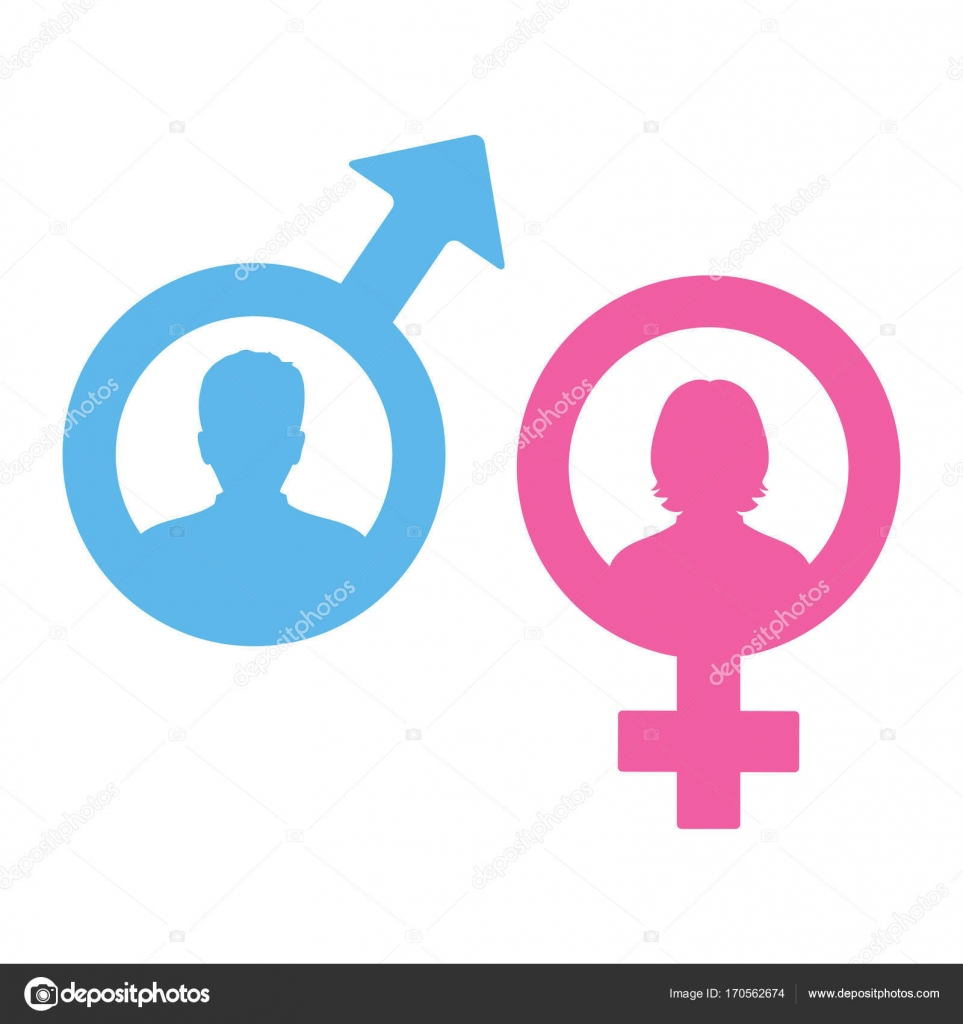 Male And Female Symbols Stock Vector Elena3567 170562674