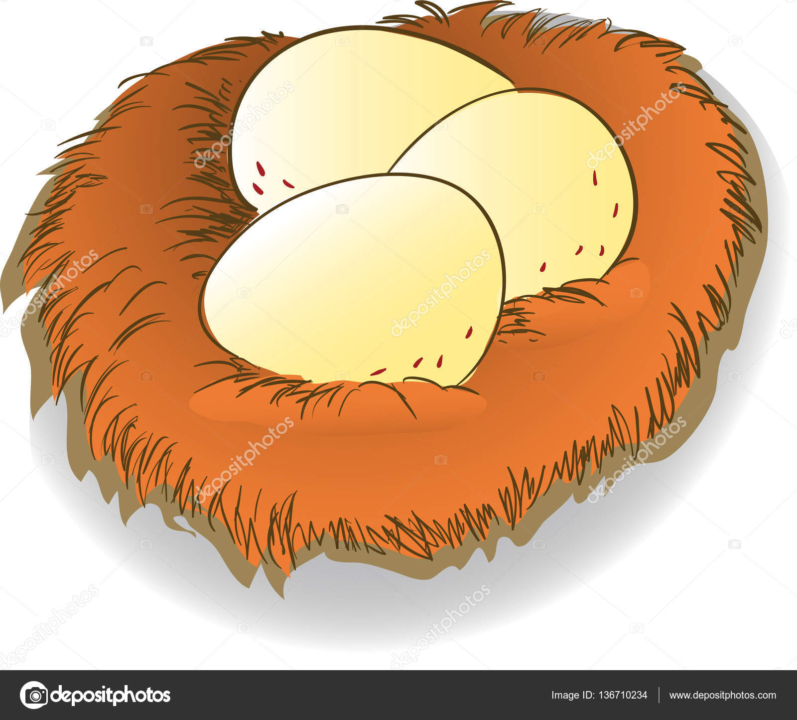eggs png clipart - chicken e PNG image with transparent background | TOPpng