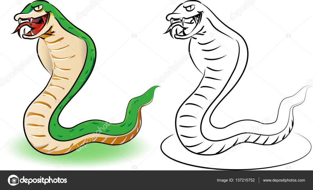 Serpiente verde y contorno - ilustración de dibujos animados ...