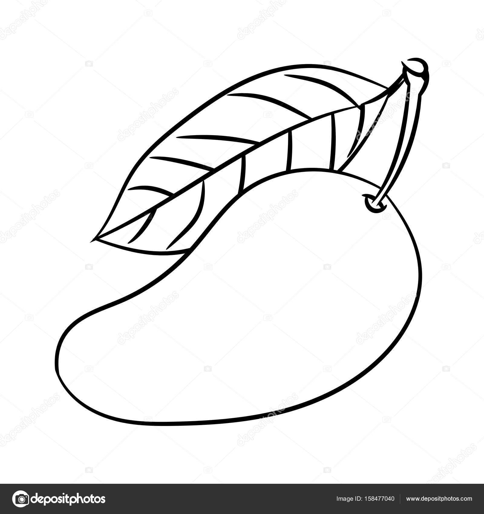 Dibujo de la línea de Mango-línea Simple Vector — Archivo Imágenes ...