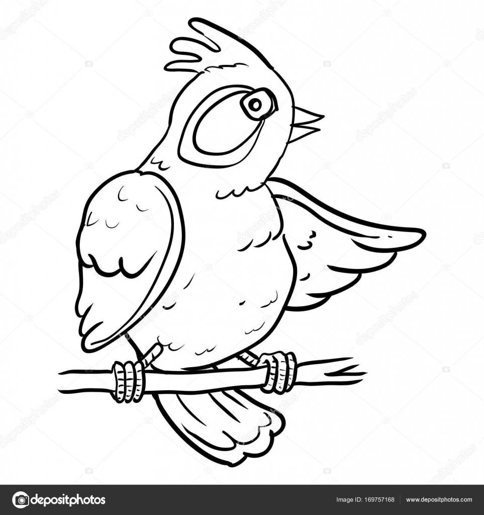 Coloriage Oiseau Sur Arbre.Dessin Anime Oiseau Sur L Arbre De Direction Illustration